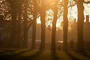 With south London homes in the background, a person walks through a landscape of an urban setting sun, on 5th January 2017, in Ruskin Park, London borough of Lambeth, England.