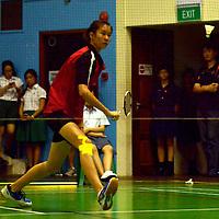 2014 A Division badminton River Valley High
