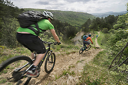 Mountain bikers speeding down forest path