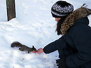Saint Petersburg, Russia, A young girl feeds a squirrel in a park