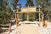 Nature Discovery Zone in Big Bear California