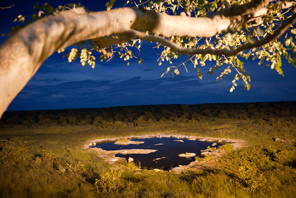 A flood-lit waterhole near the Halali restcamp at Etosha National Park in northern Namibia. Strategically located halfway between Okaukuejo and Namutoni, Halali is situated at the base of a dolomite hill, amongst shady Mopane trees.  A flood-lit waterhole which is viewed from an elevated vantage point provides wildlife viewing throughout the day and into the night.