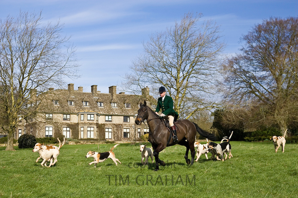 Member of Heythrop Hunt rides with hounds at traditional Hunt Meet on Swinbrook House Estate in Oxfordshire, United Kingdom
