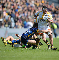 Nathan Hughes No 8 for Wasps - Mandatory by-line: Alex James/JMP - 16/04/2016 - RUGBY - Sixways Stadium - Worcester, England - Worcester Warriors v Wasps - Aviva Premiership