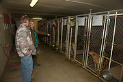Renowned dog trainers Tom and Tina Dokken at their Oak Ridge Kennels in Minnesota
