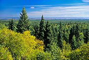 Boreal forest from fire tower on Baldy Mountain, the highest point of elevation in Manitoba. <br />