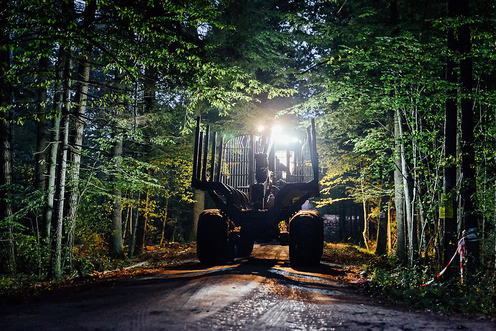 Harvester and forwarder logging machines are heading work at dusk, when they'll be much harder to spot.