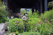 High Line Gardeners and Thunderstorm