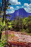 Estado Bolivar, Venezuela