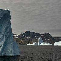 Icebergs in Dygalski Fjord on South Georgia Island.