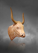 The Minoan clay bull's head rhython lbation vessel,  Palaikastro 1500-1450 BC; Heraklion Archaeological  Museum, grey background .<br /> <br /> If you prefer to buy from our ALAMY PHOTO LIBRARY  Collection visit : https://www.alamy.com/portfolio/paul-williams-funkystock/minoan-art-artefacts.html . Type -   Heraklion   - into the LOWER SEARCH WITHIN GALLERY box. Refine search by adding background colour, place, museum etc<br /> <br /> Visit our MINOAN ART PHOTO COLLECTIONS for more photos to download  as wall art prints https://funkystock.photoshelter.com/gallery-collection/Ancient-Minoans-Art-Artefacts-Antiquities-Historic-Places-Pictures-Images-of/C0000ricT2SU_M9w