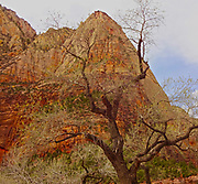 Southern Utah, National Parks and Monument Zion National Park