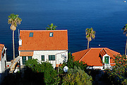 Traditional orange-tiled roofed houses and palm trees, against blue water of Adriatic Sea.