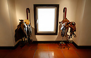 Inside the stud farm exists a museum with some pieces about the history of the horses between cultures, their connection and importance with the human being.