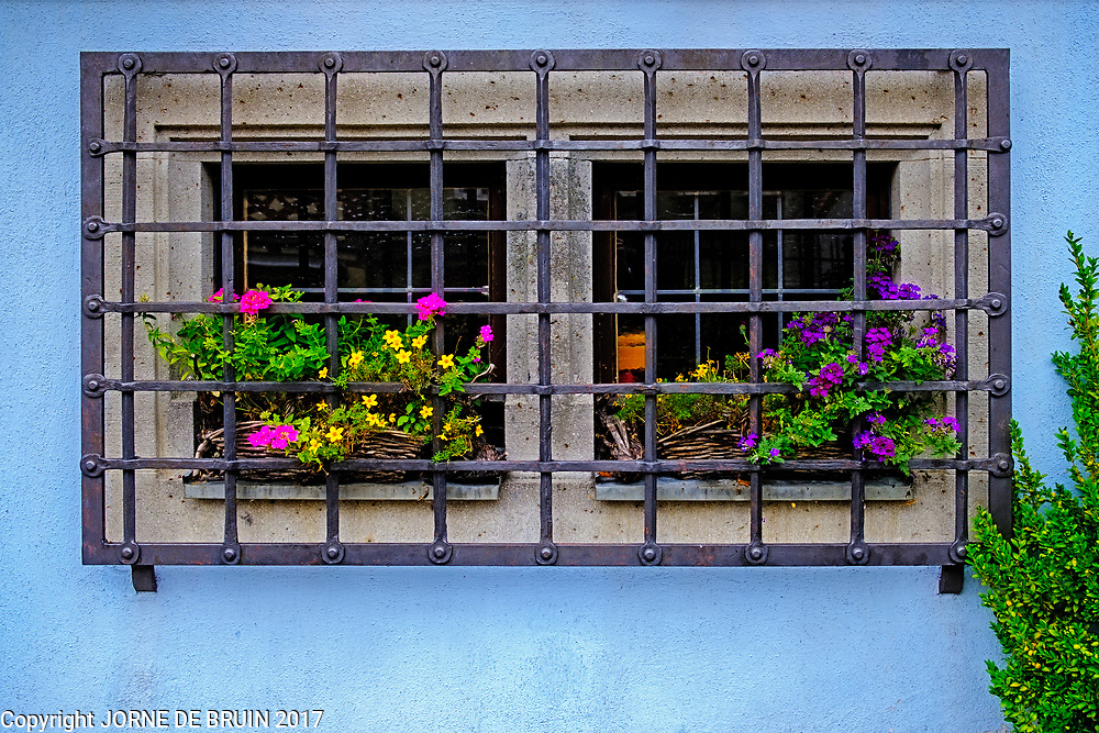 A flowery and steel barred window in the old town of Rothenburg ab der Tauber in Germany