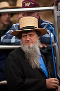 Amish man at the horse auction during the Annual Mud Sale to support the Fire Department  in Gordonville, PA.
