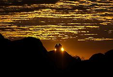 Los Angeles - The Milky Way Above Joshua Tree National Park - 01 Oct 2016