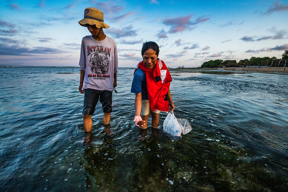 A mother and son search for sea urchins among the seagrass off a popular beach in Bali, Indonesia.