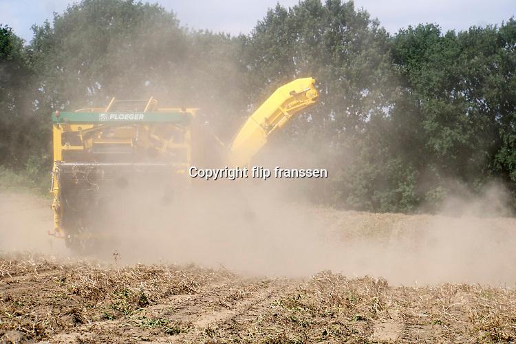 Neder;and, Groesbeek, 5-8-2019Een loonbedrijf oogst met een grote machine aardappelen van een veld met verdoogde grond. Werken in een sofwolk . Door het droge weer zijn de knollen kleiner als normaal.Foto: Flip Franssen