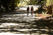 International athletes featured for an article in Triathlon Plus magazine.Photographed in and around Stellenbosch. Image by Greg Beadle