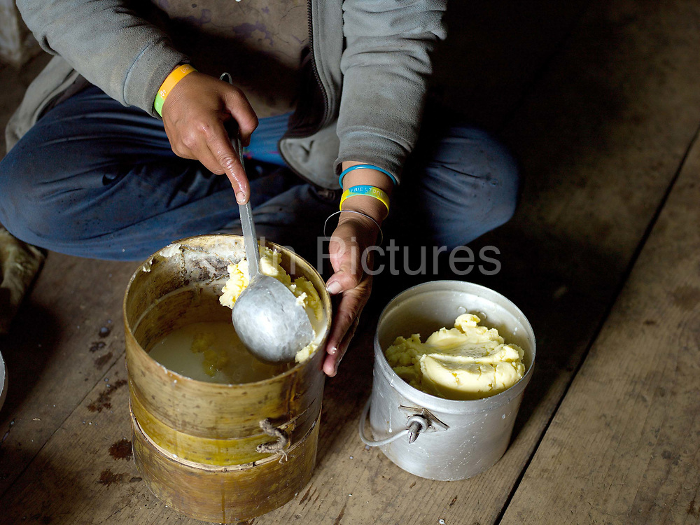 A Brokpa farmer hand making fresh cow's milk butter by hand, Thagthi village, Eastern Bhutan. Rural Bhutanese farmers make butter and cheese partly for storage or as a preserved form of milk for self consumption, with any excess being sold for cash or traded with neighbouring villages for daily necessities.