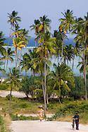 Palm trees and sea at Matemwe, Zanzibar, Tanzania