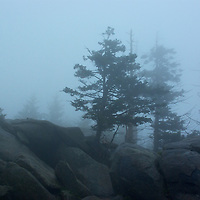 Great Smokey National Park