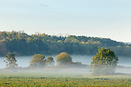 Morning fog in the Town of Minisink, N.Y., on Oct. 9, 2020.