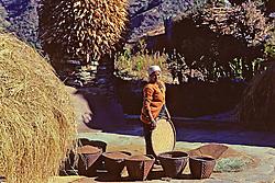 Woman Drying Grains