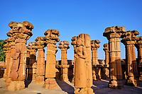 Inde, Gujarat, region du Kutch, Bhuj, necropole de Chhatedi // India, Gujarat, Kutch, Bhuj, necropolis of Chhatedi