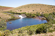 Weir and pool in the Belihul Oya river, Horton Plains National Park, Central Province, Sri Lanka, Asia