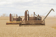 Photo Randy Vanderveen<br /> LaGlace, Alberta<br /> 2015-09-26 <br /> Bryan Woronuk (front) and Gary Dixon work in tandem with old Massey Harris combines as they harvest  Canada Prairie Spring (CPS) wheat takes place on Gary and wife Shirley's land for the Bear Lake  Growing Project. The grain will be sold and money donated to the Canadian Food Grains Bank. This year the project had a number of groups and individuals from around the South Peace sponsor an acre to cover the input costs so all the money from the grain sold could be donated.
