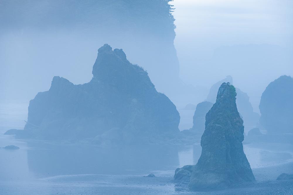 Ruby Beach, fog, August, Pacific Ocean coastline, Olympic National Park, Washington, USA