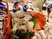 Our first lunch was staged at Six Mile Wash (River Mile 5.9) on the Colorado River in Grand Canyon National Park, Arizona, USA.