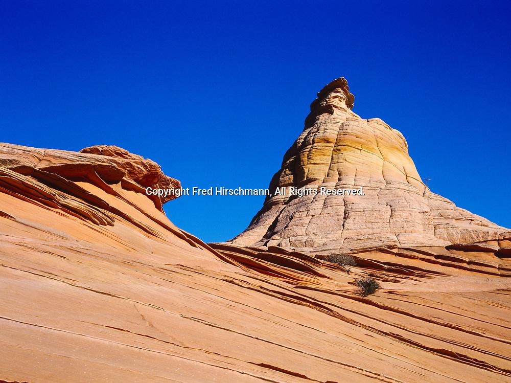 Wind-sculpted dome of Navajo Sandstone, Vermilion Cliffs National Monument, Paria-Vermilion Cliffs Wilderness, Arizona.