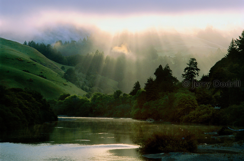 God Beams over the Russian River on a foggy spring morning near Duncan's Mills in Northern California's Sonoma County. Once known for it's robust steelhead trout population, the Russian River faces many environmental challenges up stream and the steelhead and coho salmon populations deminish more each year. The now famous steelhead populations in New Zealand originated from planted Russian River steelhead trout.