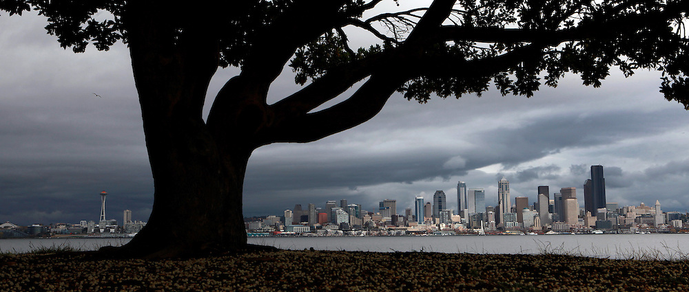The rain took a break, although dark storm clouds linger over downtown Seattle, seen from W. Seattle's Don Armeni Park. (Ken Lambert / The Seattle Times)