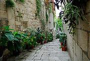 Potted plants in narrow street or lane, Korcula old town, island of Korcula, Croatia