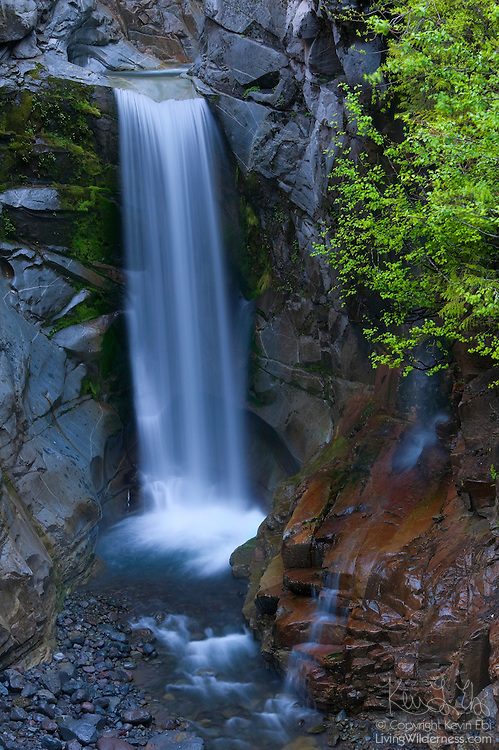 Christine Falls, one of the many dramatic waterfalls in Mount Rainier National Park, drops about 75 feet through a narrow gorge.