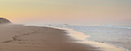 A lone surfer calls it a day at Cahoon Hollow Beach in Wellfleet.