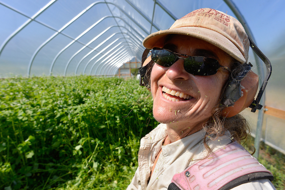 Woman with plant debris on her face after weed-whacking cover crop in a hoop house in Oregon's Wallowa Valley.