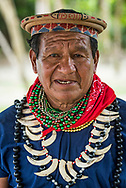 Coca, Equador, January 2020.  Chief Carlos of the Cofan Tribe shows his knowledge of healing plants in the rainforest. Yasuní National Park and the Cuyabeno Wildlife Reserve are two of the famous protected areas of eastern Ecuador. Sailing on the Manatee Amazon Explorer along the lush upper Napo River, one of the tributaries of the great Amazon River, we explore one of the world's most diverse ecosystems, with its fascinating wildlife and stunning scenery. The area is also home to several indigenous rainforest groups. Photo by Frits Meyst / MeystPhoto.com