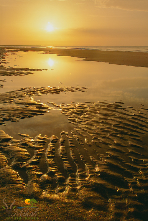Yellow flaring sun reflected in puddles on beach with rippled sand at huntington beach state park