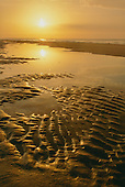Oceans, Beaches, Bays