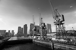 Cranes have become a symbol of London skyline, a costant presence that is evolving London cityscape.