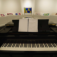 """BRESCIA, ITALY - FEBRUARY 11:  A general view of a Jazz works by Matisse at the  Santa Giulia Museum on February 11, 2011 in Brescia, Italy. The exhibition """"Matisse La Seduzione di Michelangelo"""" shows  180 works of the French artist and will stay open until June 12th 2011"""