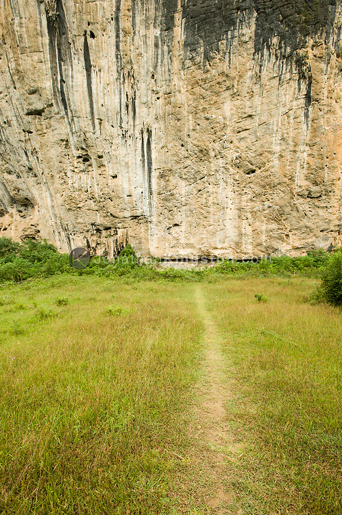 A grass path leading to a white cliff near Yangshuo, China.