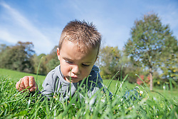 Small boy grass meadow concentration serious