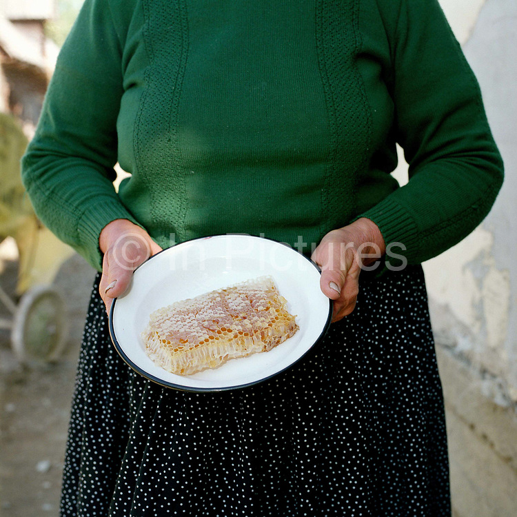 A beekeeper holding a bowl of honeycomb, Glod, Maramures, Romania