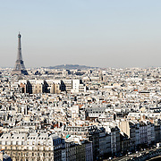 Aerial view of Paris skyline from the roof of Notre Dame de Paris.
